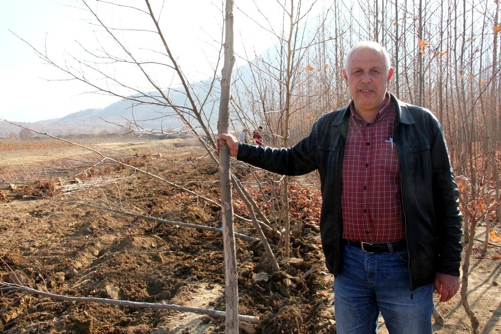 Seydişehir'de 2 milyon 600 bin fidan üretildi