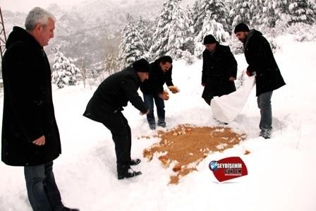 Seydişehir'de hayvanlar için doğaya yem bırakıldı
