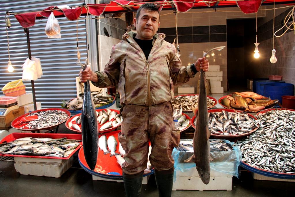 Köpek balığı Seydişehir halk pazarında