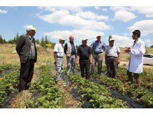 Büyükşehir Tarımsal Eğitimlerle Çiftçiye Katkı Sağlıyor