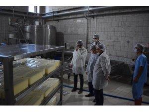Kaymakam Erdoğan, Beyde süt tesislerini ziyaret etti