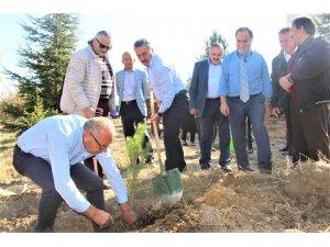 Seydişehir'de 10 bin fidan toprakla buluştu