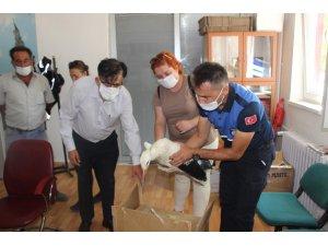 Yaralı leyleğe zabıta ekipleri sahip çıktı